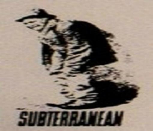 Subterranean Records